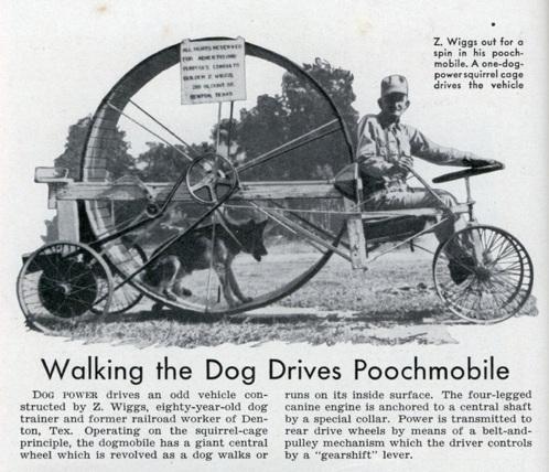 Lrg Poochmobile