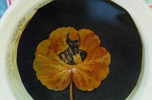 Leafpic