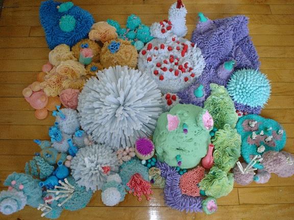 Coralreefwhole