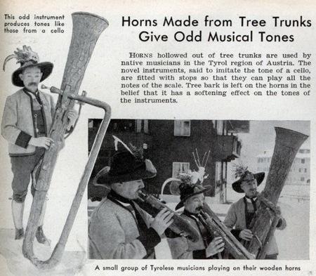 Med Tree Horns