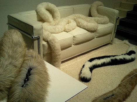 No Constraints Carpet