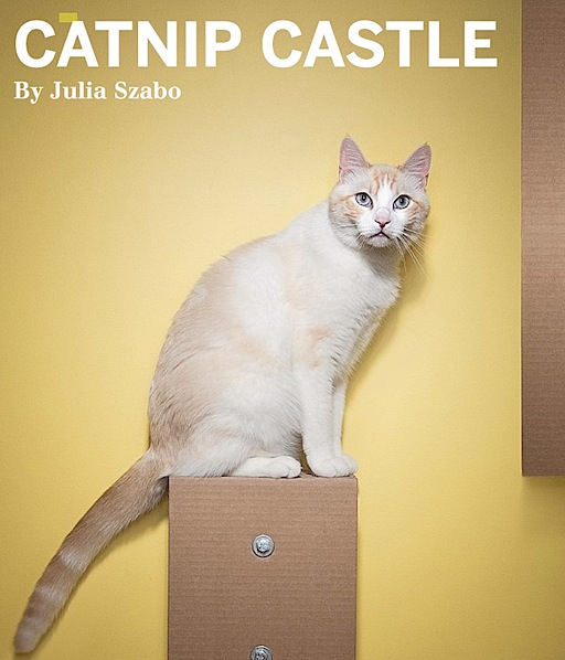 Catnipcastle