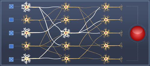 neural_circuit.jpg