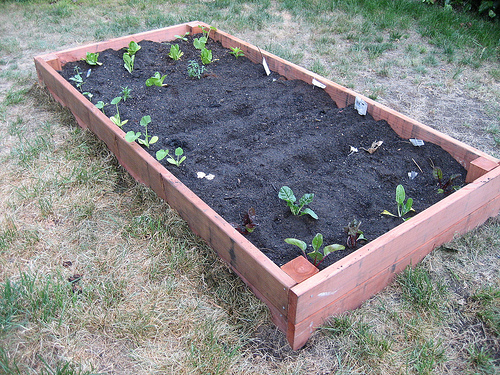 HOW TO Build Your Own Garden Box Make
