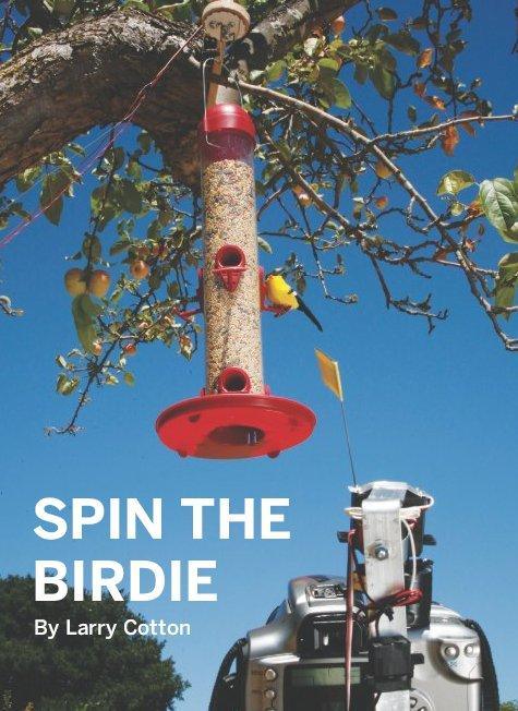 birdie11.jpg