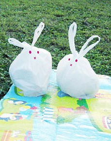rabbit_kun_1.jpg