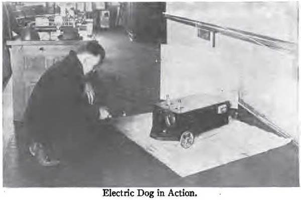 electricDog101408_2.jpg