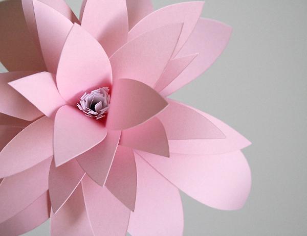 a_little_hut_flower.jpg