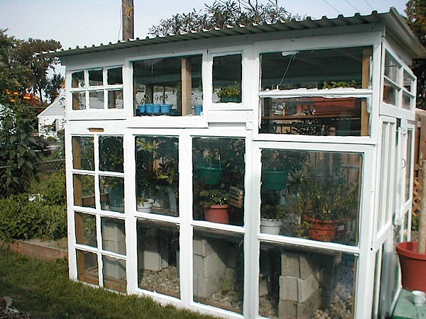 greenhousewindows.jpg