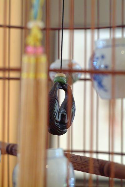 bird_detail_3.jpg