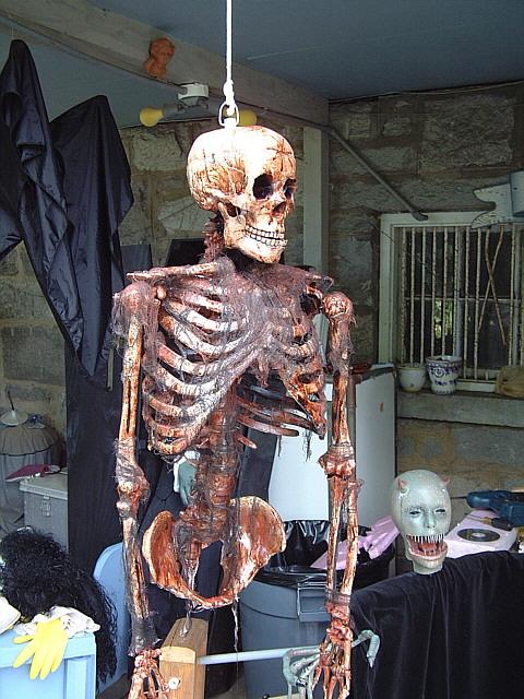 corpsified skeleton.jpg