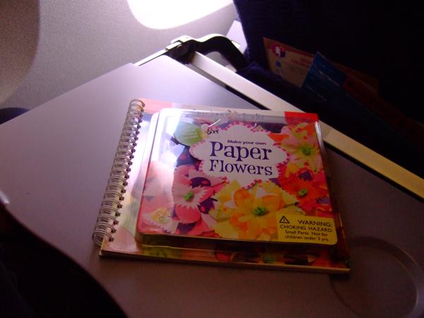 paperflowers1.jpg