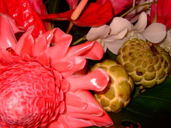 tropicalthanks_step9a.jpg