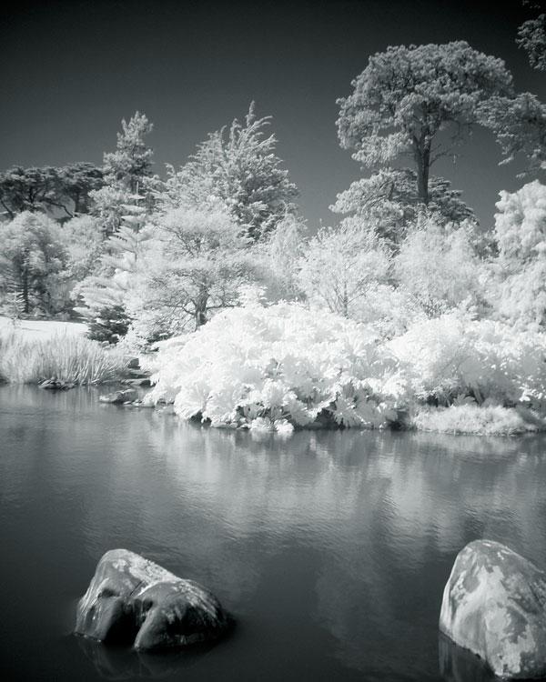 flashback-infrared-golden-gate-lake.jpg