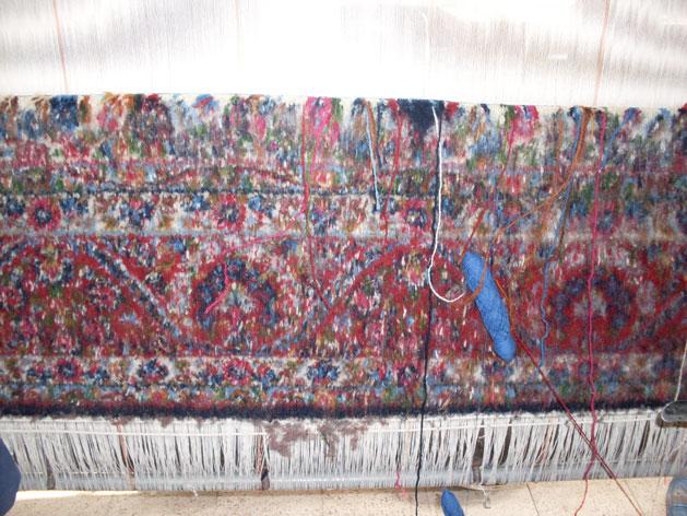 kerman-rugs-front-of-rug.jpg