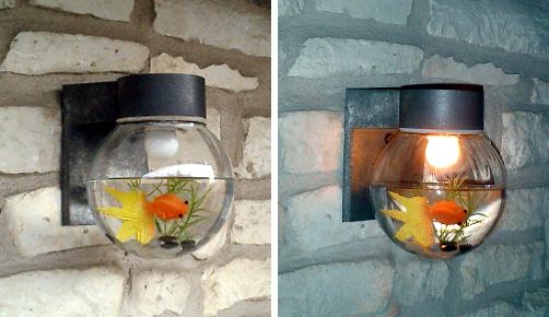 light-fishture.jpg