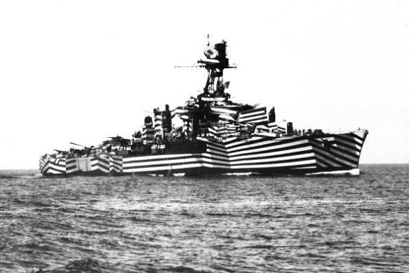 zebra-striped-camouflage.jpg