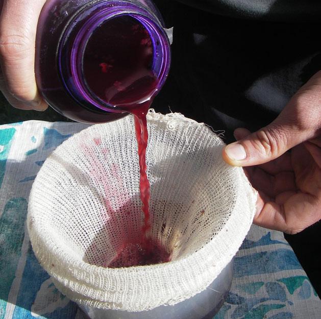 one-week-wine-step-6.jpg