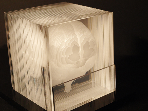 lasercutbrain1.jpg