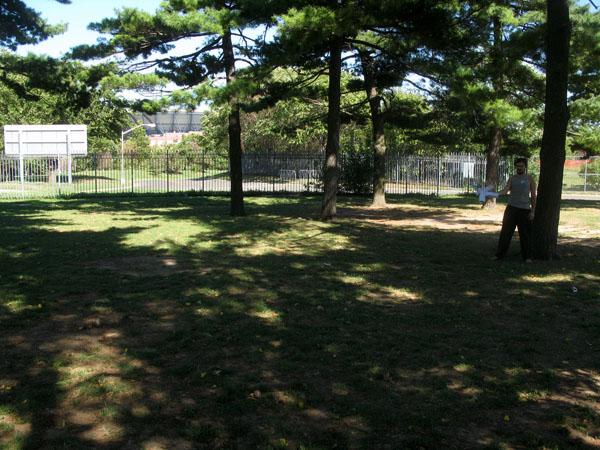 maker-faire_grounds_swimming-trees.jpg