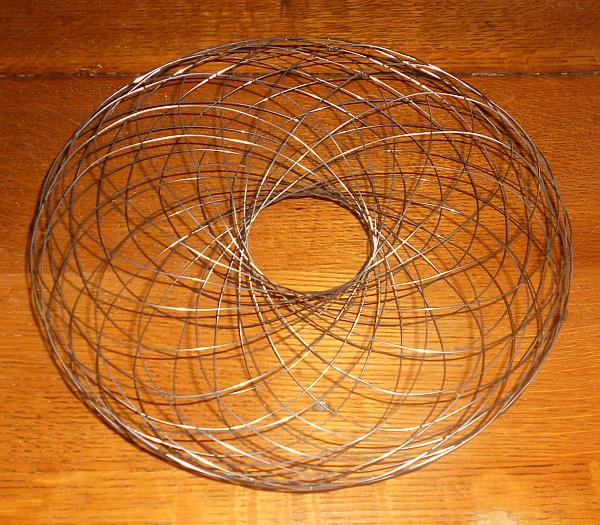 kolzov-wire-torus.jpg