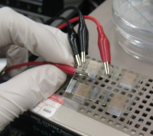 printing_transistors.jpg