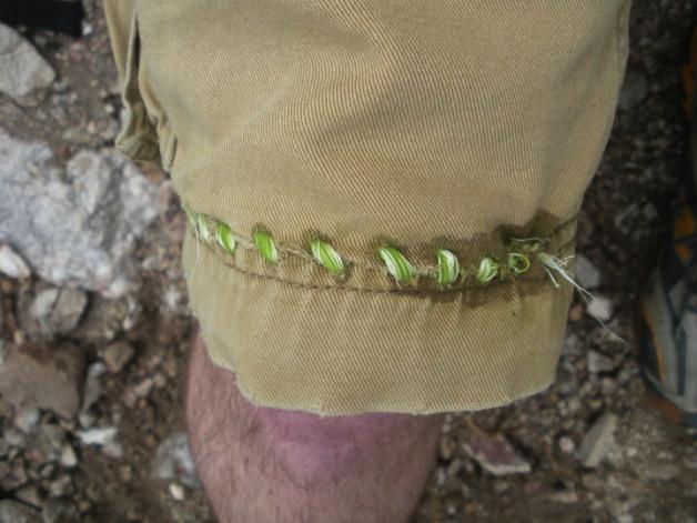 shorts_sewn_with_agave_fiber_dec2010.jpg