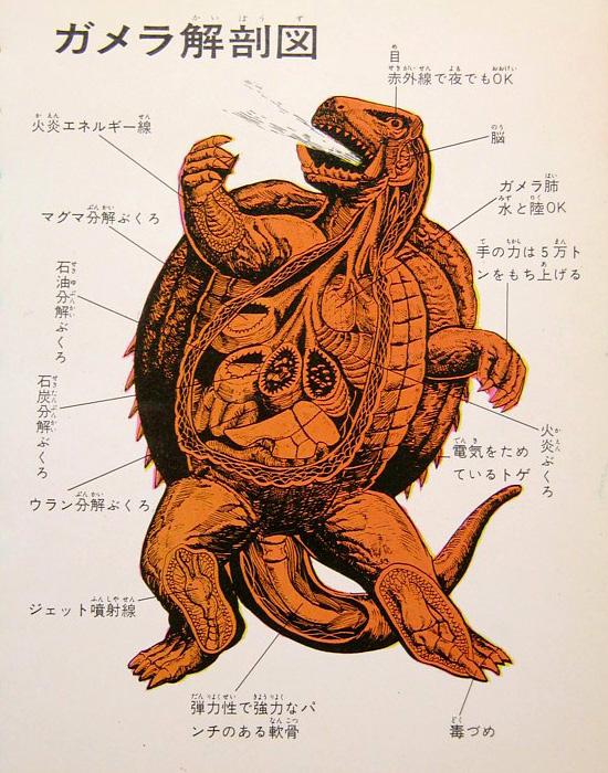 kaiju_anatomy_1.jpg