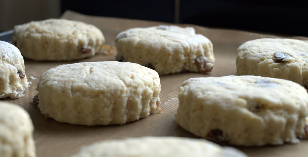 how to make cream tea scones