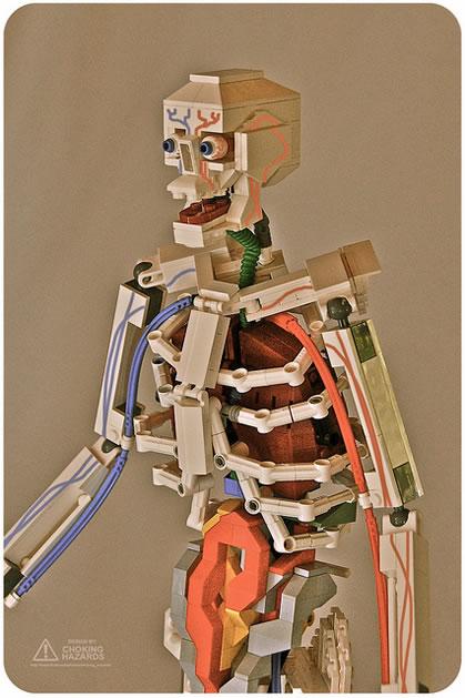 lego_anatomy_skeleton.jpg