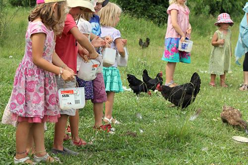farmparty3.jpg
