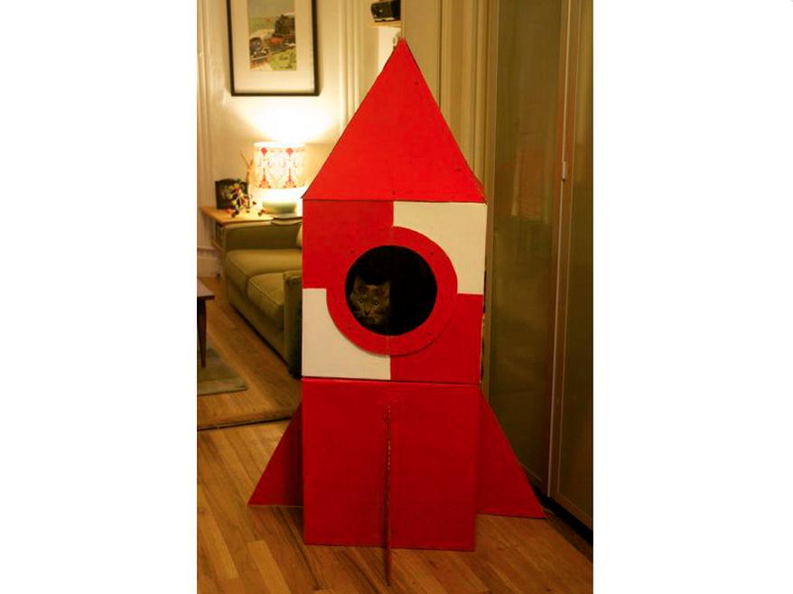carboard cat rocket