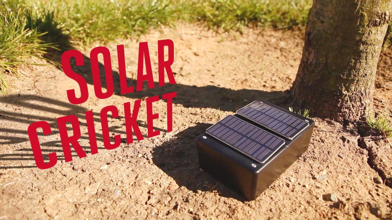 wp08_solar-cricket