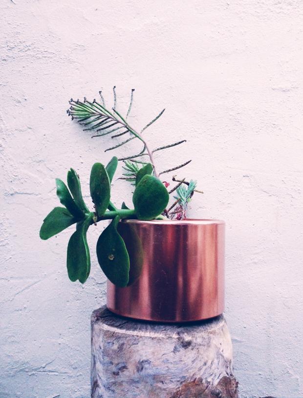 copper-planter-by-justina-blakeney
