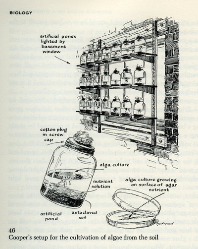 "Roger Hayward, ""Reproduced illustrations from The Scientific American Book of Projects for the Amateur Scientist, by C. L. Stong.,"" Special Collections & Archives Research Center, accessed November 29, 2013, http://scarc.library.oregonstate.edu/omeka/items/show/4471."