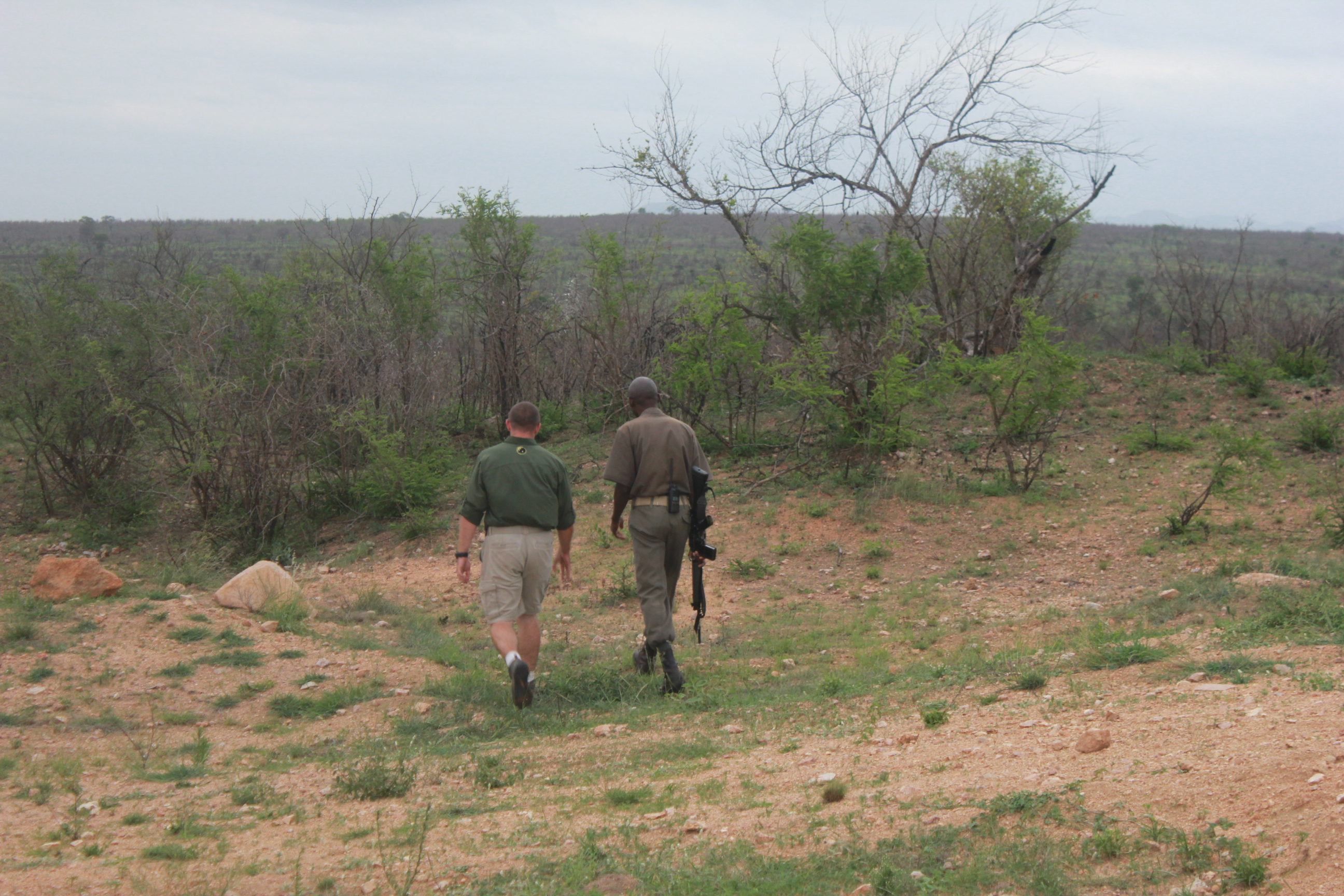 Embedded with rangers