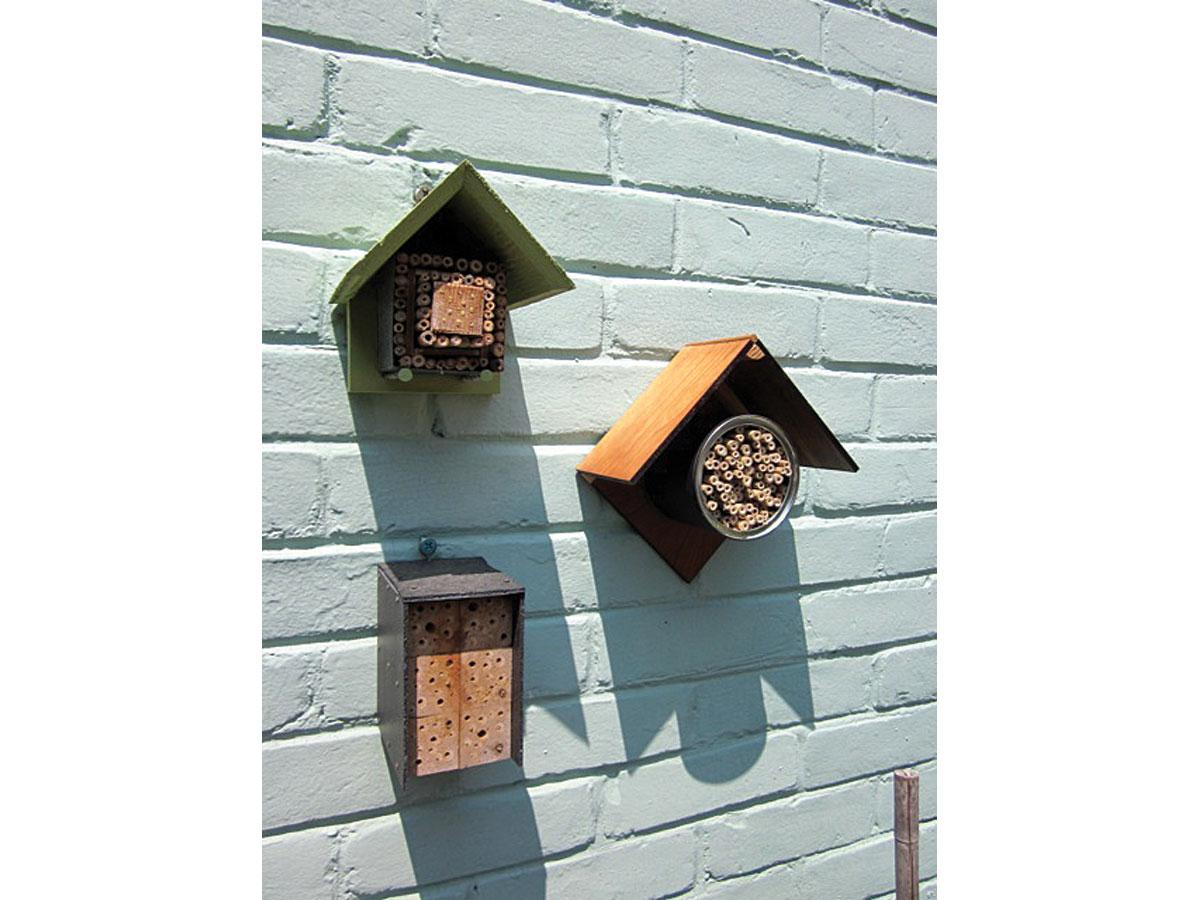 Solitary Bee Condos
