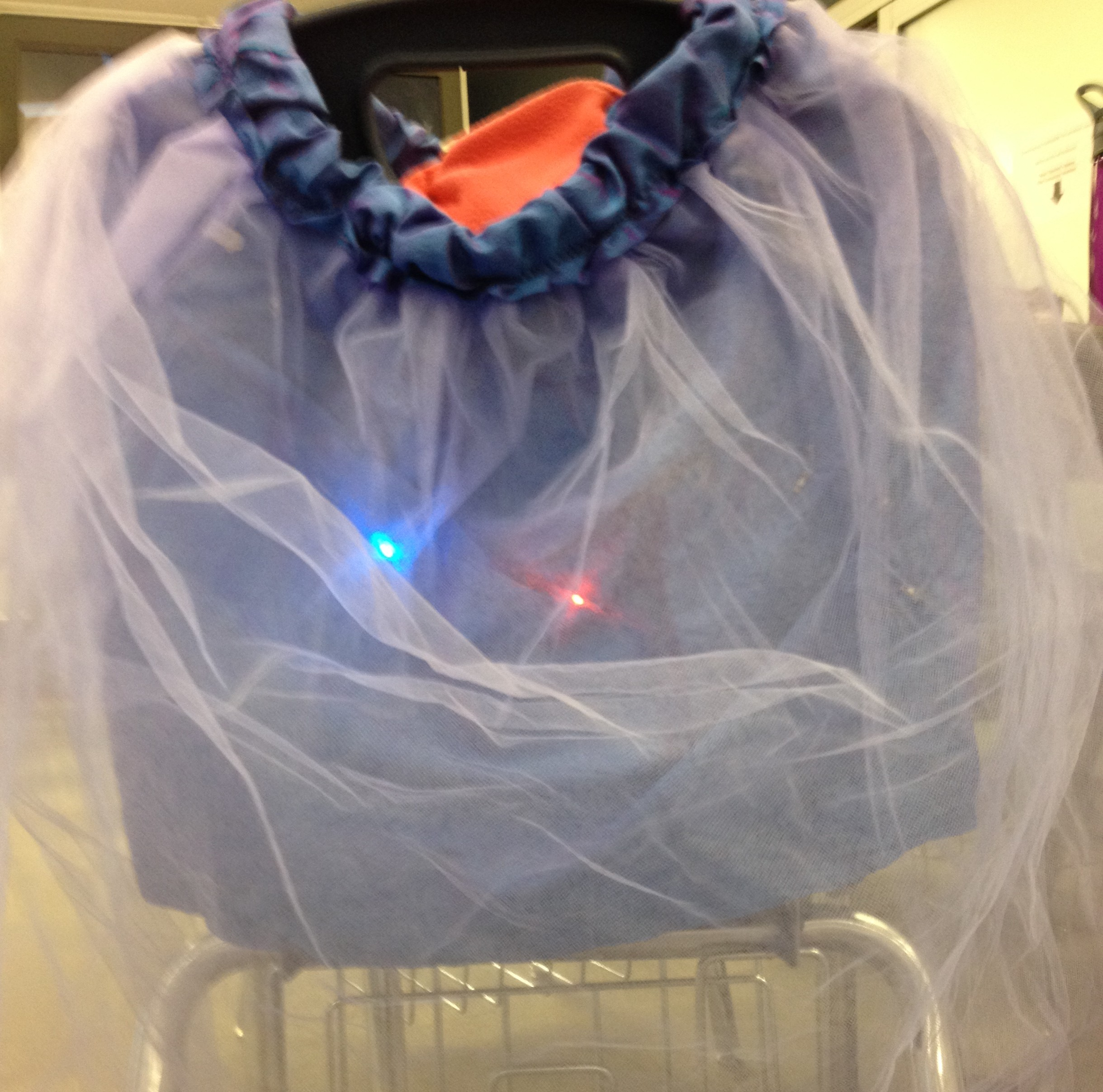 This is the light-up skirt I made before I started on my Garduino.