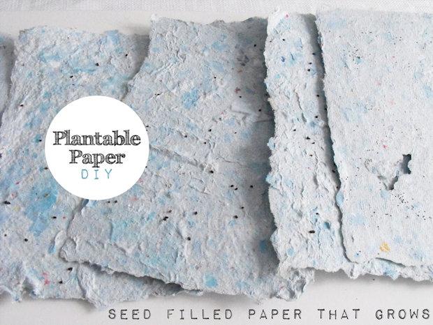 kanelstrand_plantable_seed_paper_01