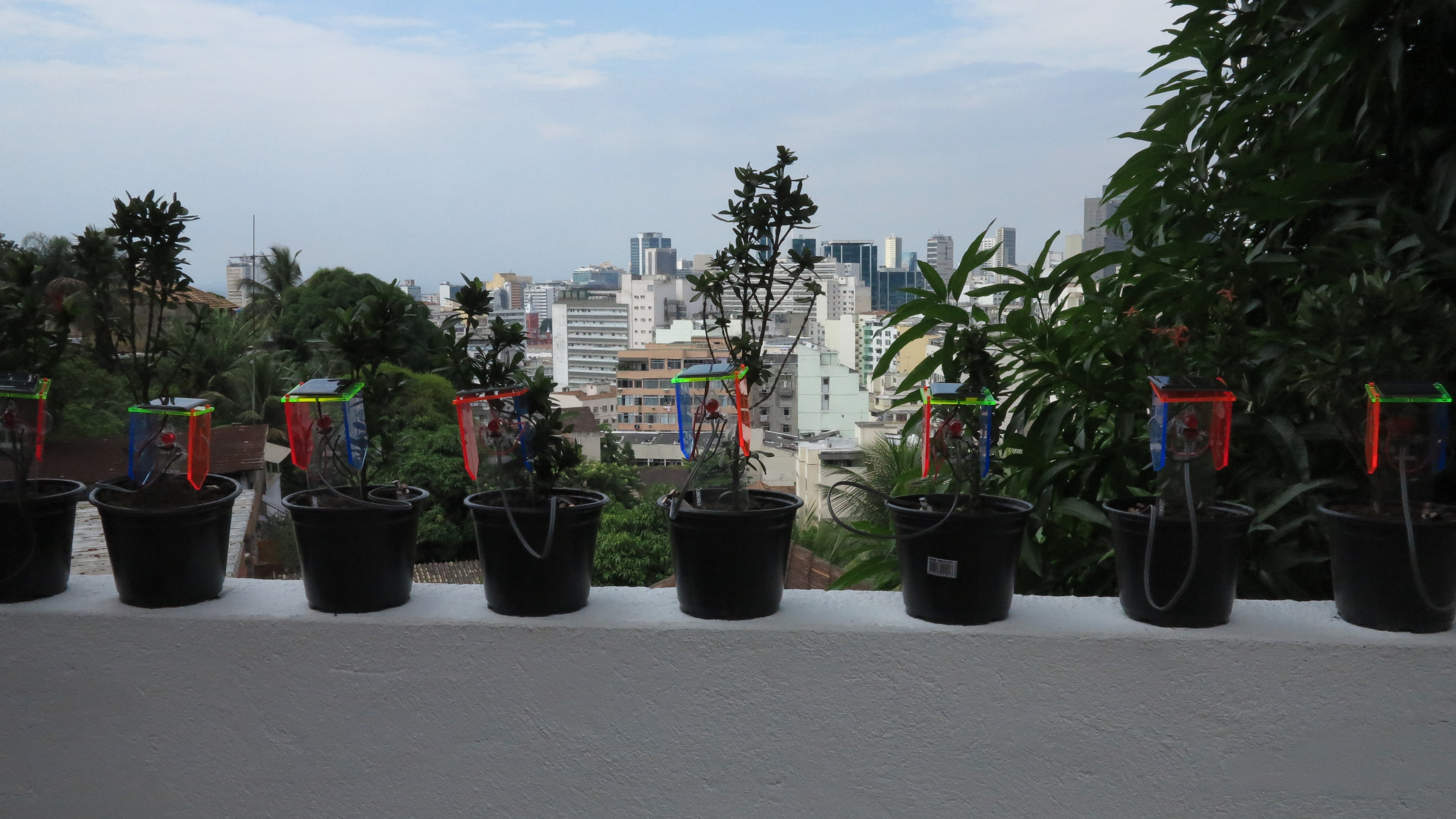 All the assembled thirsty plants kits.