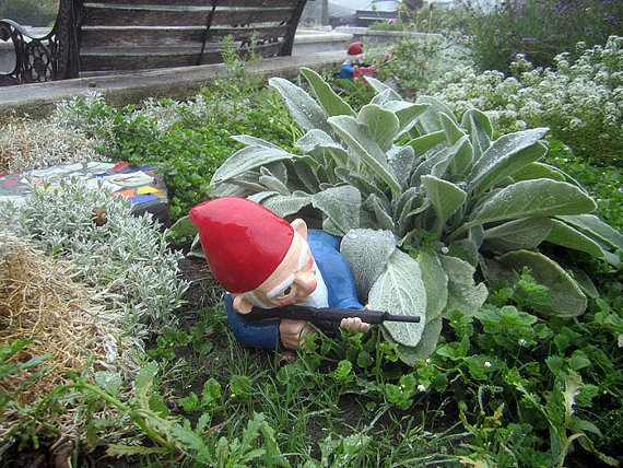 thorsson gnome prone