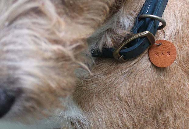 designsponge_leather_pet_tags_01