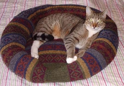 DIY-Comfy-Pet-Bed-from-Old-Sweater-10_1