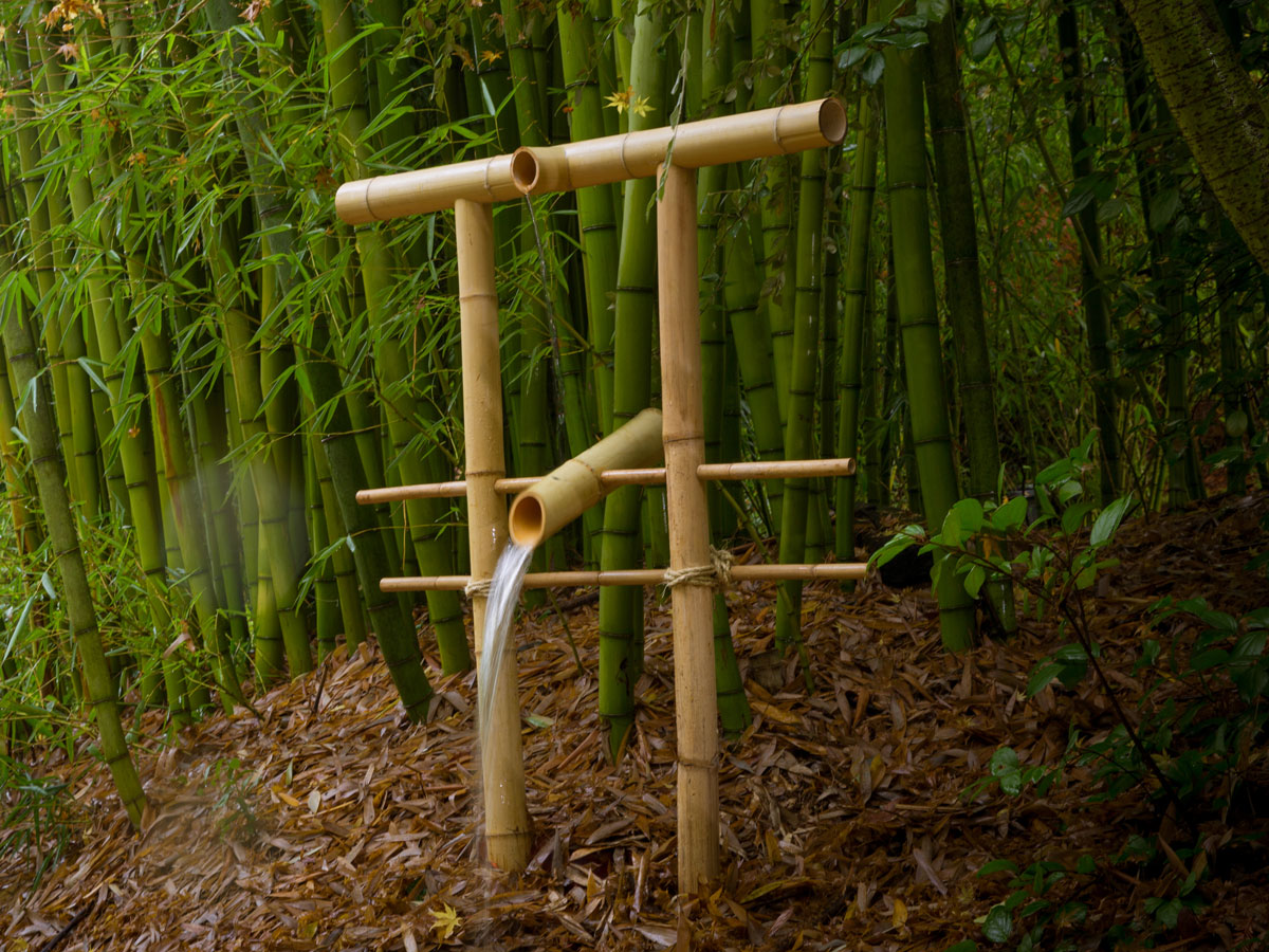 Diy bamboo fountain scares scavenging critters make for Making a water garden